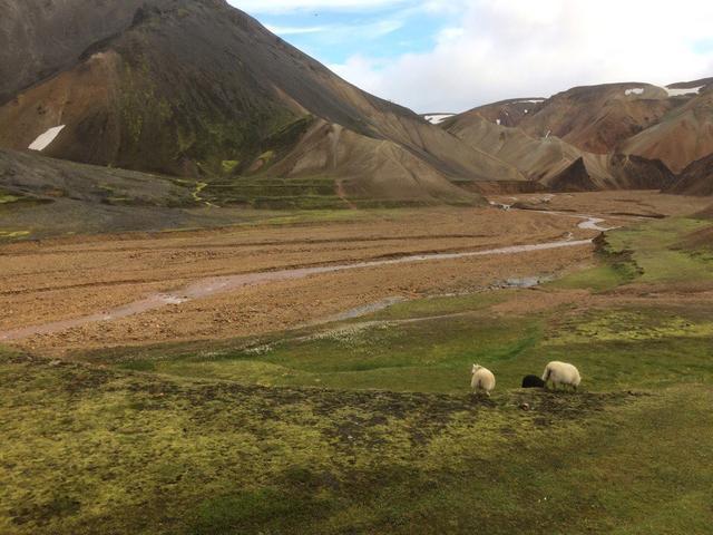 Исландские пейзажи
