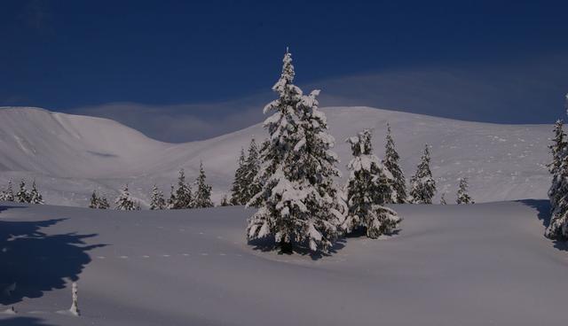 Пеший зимний поход