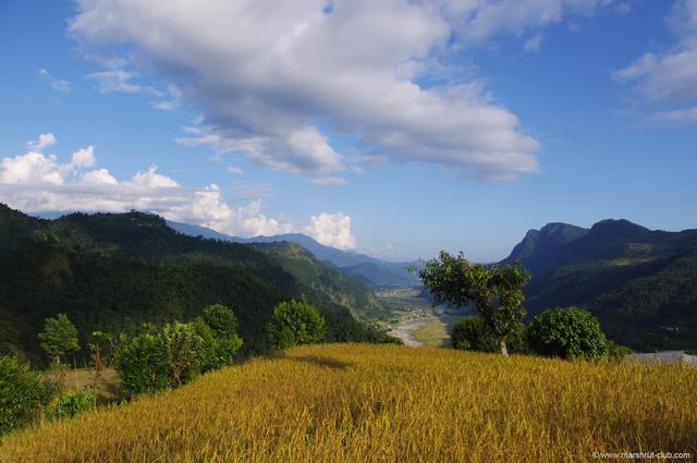 Поле в горах Непала