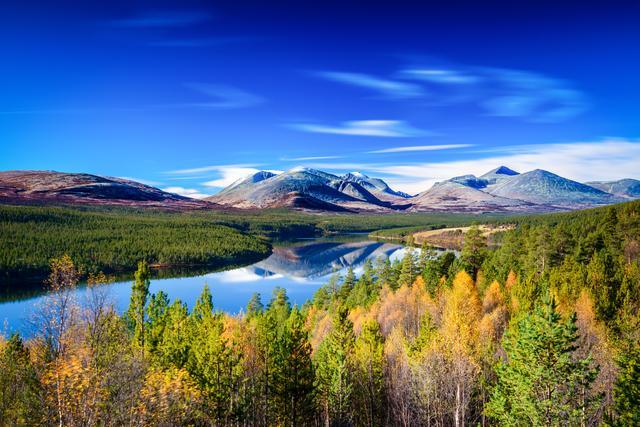 Горы, леса и озеро