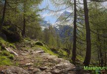 Дорога к перевалу