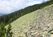 Зеленые камни Горган