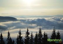 Туман до горизонта
