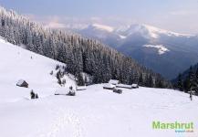 Зима на полонине Карпат