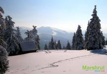 Утренние следы на снегу
