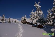 Зимний приют