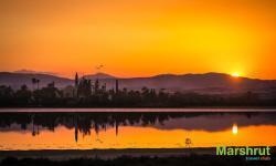 Утренний Кипр