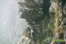 Птицы на скалах