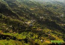 Сельское хозяйство в Непале