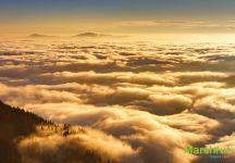 Выше неба